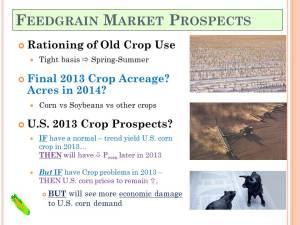 KSU 2013 Risk-Profit_Feedgrain Mkt Prospects Summary (29)